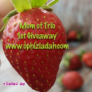 Mom Of Trio 1st Giveaway